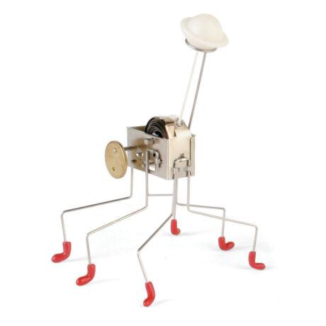 Minirobot, Oahaca